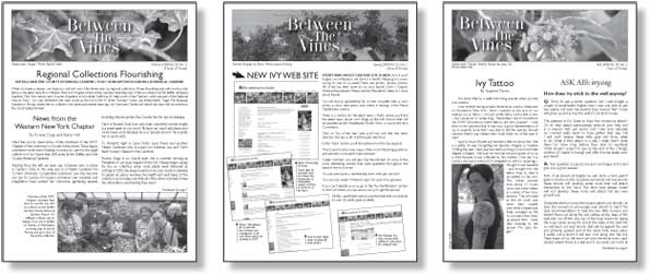 Black And White Newsletter Templates Aprilonthemarchco - Black and white newsletter templates